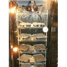 Metal Wire Shelf for Mushroom Growing Storage Rack, NSF Approval