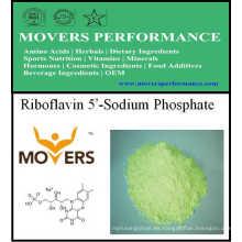 Heißer Verkauf Vitamin Riboflavin 5'-Natriumphosphat