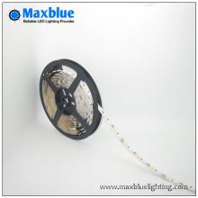 LED 12V / 24V 2835 3528 5050 SMD Strip LED Light