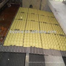 Bandeja de suporte para ovos descartavel