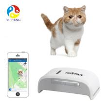 Nenhuma caixa de varejo tk estrela tk909 pet gps gsm dispositivo rastreador gprs pode inserir gps gola para cão gato com faixa web livre