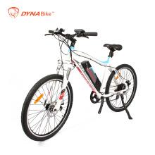 Dynavolt new design mountain e-bike with lithium battery brand new