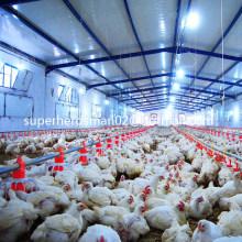 Conjunto Completo de Máquinas e Equipamentos Agrícolas para Frangos de Corte Automáticos