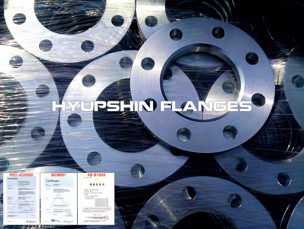 Hyupshin Flanges Forged Flange