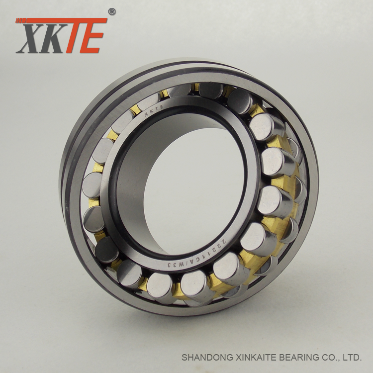 Conveyor Tail Pulley Bearing