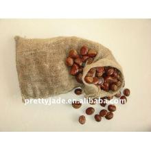 Hot sale chinese fresh chestnut