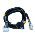 Smart Harness Autoradio