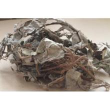 100% Natural Khaki Huadi Extract Labisia Pumila