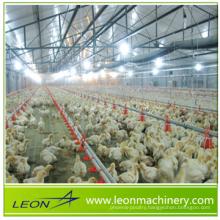 hot sale poultry Broiler poultry farming equipment