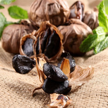 Tempo limitato Multi bulb Black Garlic