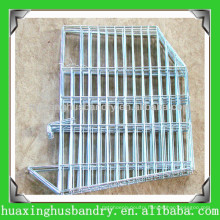 Hot Salable Chicken Wire for Bird Cage