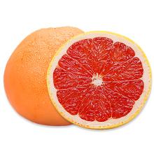 Hot Selling Quality Honey Fruit Sweet Fresh Grapefruit
