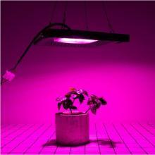 Commercial Full Spectrum Lamp 50W LED Grow Light