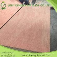 Poplar/Hardwood Core Bbcc Grade 5.5mm Bintangor Plywood with Cheap Price