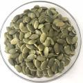 High Quality Organic Pumpkin seeds kernels