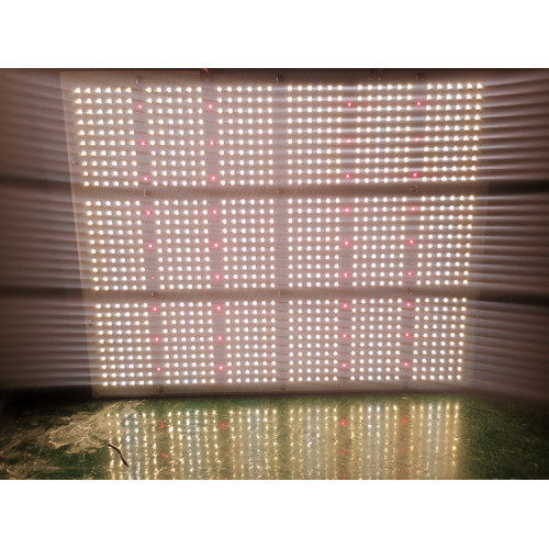 1000W Full Spectrum Wasserdichtes lm301b LED Grow Light