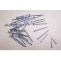 Hot Sale Umbrella Head of All Sizes Roofing Nails