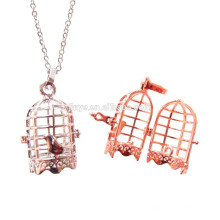 Fashion Long Bird Cage Collier diffuseur
