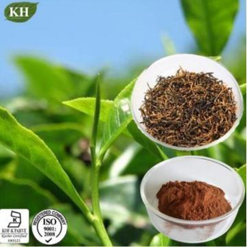 Extrato de chá preto lutando contra o endurecimento do ateroma