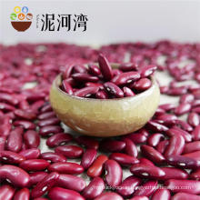 Dried Dark Red Kidney Bean For Canned