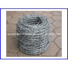 Double Twist Galvanized Razor Barbed Wire, Barbed Wire