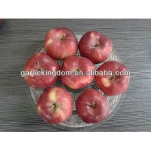 Fresco Huaniu Apple 100-125 18kg