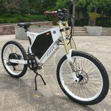 Vélo électrique de gros pneu approuvé par CE personnalisé
