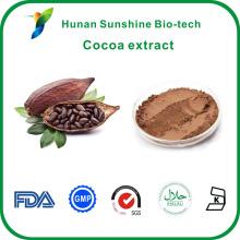Gros No CAS: 83-67-0 Théobromine 10%, 20% extrait de fève de cacao