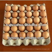 Reciclagem de resíduos de bandeja de ovos de papel