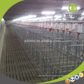 Hot dip Galvanized Pipe For Sale Good Quality Hog Gestation Crates