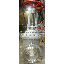 API600 150lb Válvula de compuerta con extremos de brida RF