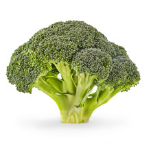 Fresh Export Natural Vegetable Exporter With High Quality Green Healthy Broccoli