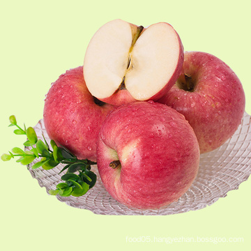 Export Fresh FUJI Apple From China