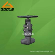 Socket Welded Pressure Seal Globe Valve (GAJ61Y)