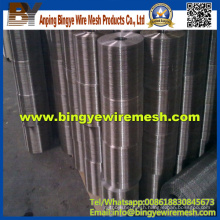 Stainless Steel Electro Galvanized Welded Wire Mesh