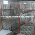 Cages de poulets de poulet de conception