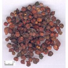 dried Schisandra Chinensis fruit
