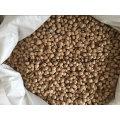 New Crop Chickpeas Kabuli Grade