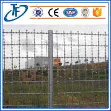 Hot Dless Strapped Line Razor Wire Fence