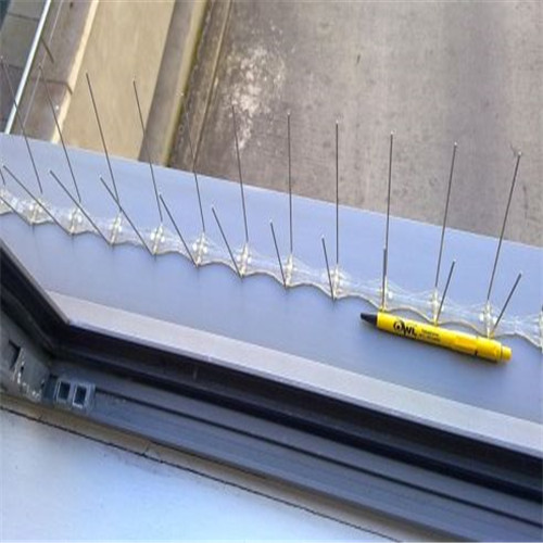 Stainless Steel Pigeon bird Spikes