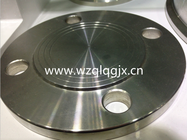 Sanitary Forged Flange
