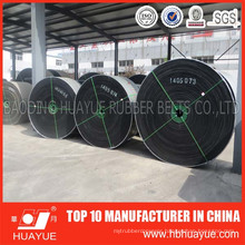 Oil Resistant, High Quality Ep100-600 Conveyor Belt
