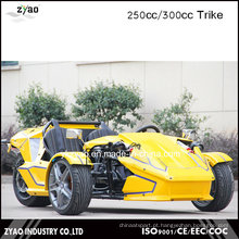 300cc Ztr Trike para Triciclo Adulto 24HP Trike Roadster 3 Roda Carro à Venda