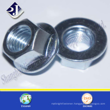 High Tensile Stainless Steel Hex Flange Nut