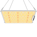 Kommerzieller Gartenbau 150w Grow Light Vertical Farming Light