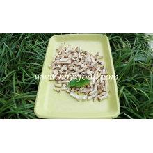 2015 Ad Shiitake Granules with Halal Certificate