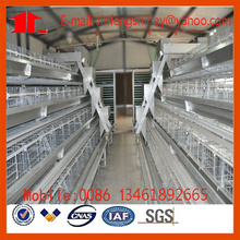 Poultry Farm Layer Chicken Cage in China