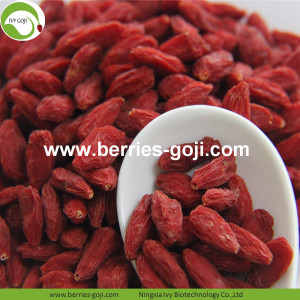 Nourriture d'alimentation Super Food Dried Goji Fruit