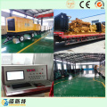 300kw China Brand Brushless Diesel Generating Set for Sale
