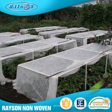 Oem Manufacturer Vegetable Cover Agricultural Non Woven Pp Fabrics